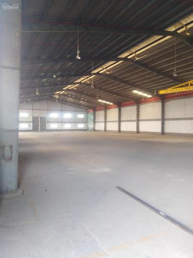 Cho thuê kho, nhà xưởng 1100m2, 1300m2, 2500m2 trong khu công nghiệp Cát Lái, Quận 2 ảnh 0