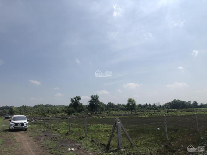 Bán đất An Tây - ngã 3 Thùng Thơ, DT 36mx57m, 300m2 thổ cư, giá thương lượng, LH CC 0988.202.799 ảnh 0