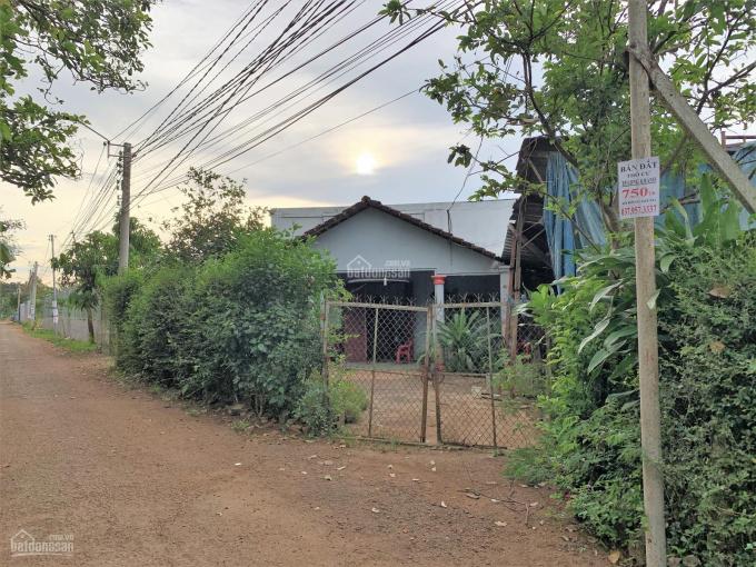 Bán gấp 341m2 đất thổ cư giá rẻ Phường Xuân Tân, TP. Long Khánh ảnh 0