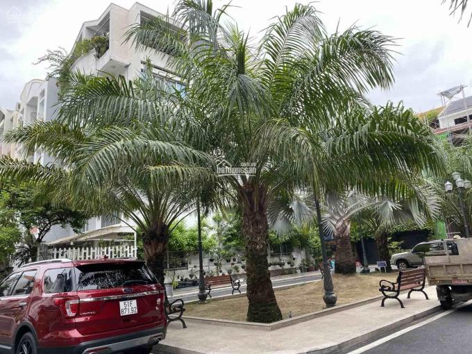 Bán biệt thự đường Thăng Long, P4, Tân Bình, 12x20m, 2 lầu, khu an ninh, yên tĩnh 24/24 ảnh 0