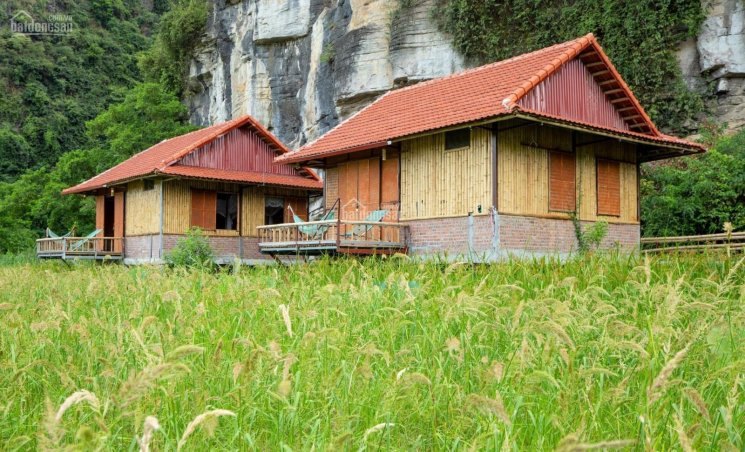 Chính chủ cần bán khu homestay thôn Khê Thượng, xã Ninh Xuân, huyện Hoa Lư, Ninh Bình, 0981896789 ảnh 0