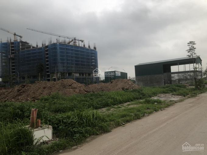 Chính chủ bán Lô đất đấu giá tại khu phân lô Tứ Hiệp, Thanh Trì, liên hệ: Cường - 0983619685 ảnh 0
