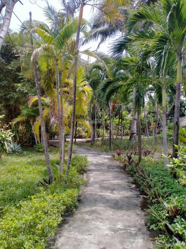 Khu resort nghỉ dưỡng tuyệt đẹp cần tìm chủ mới