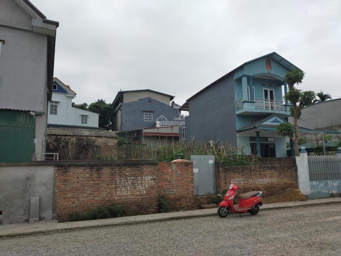 Vị trí đắc địa, đất mặt đường xã Trưng Vương, TP Việt Trì, Phú Thọ. Lh 0981.885.8825 ảnh 0