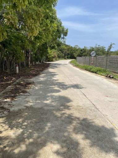 Bán 2 công đất mặt tiền đường Cây Thông Ngoài, Phú quốc, quy hoạch đất ở, LH 0909.074.779 ảnh 0