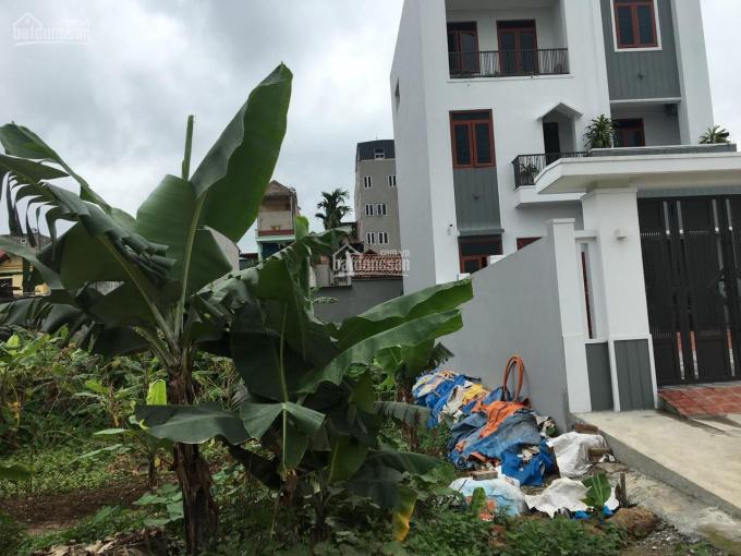 Bán lô đất ở đô thị 160m2, Phường Ninh Khánh, Thành Phố Ninh Bình ảnh 0