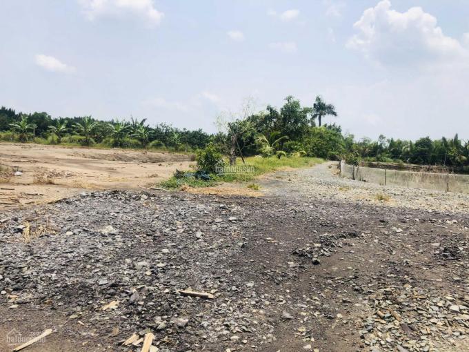 Bán đất vườn xã Vĩnh Thanh, đường ô tô vào tận nơi, giá chỉ 1.35 tỷ/1000m2 ảnh 0