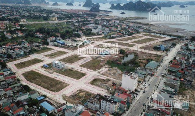 Cần bán đất LK7 và LK8 Vương Long - Vân Đồn dòng vip giá CĐT ảnh 0
