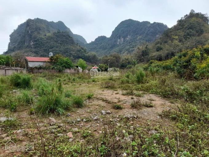 Mảnh đất đẹp với diện tích là 1600m2 có 24m mặt tiền và 200m2 thổ cư ảnh 0
