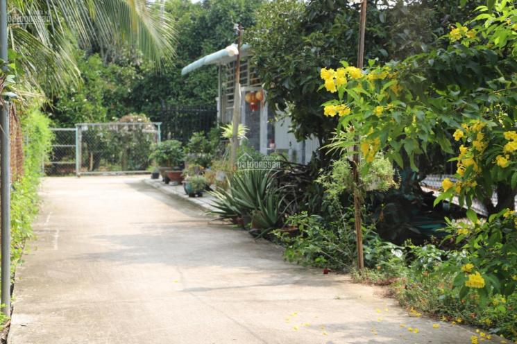 Chỉ còn đúng 1 lô đất ngang 15x32 ở An Sơn, Thuận An ảnh 0