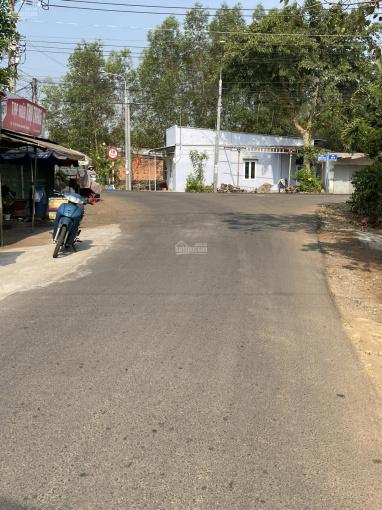 Chỉ 199tr sở hữu ngay lô đất tại xã Xuân Thọ, H. Xuân Lộc, tỉnh Đồng Nai ảnh 0