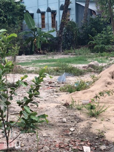 Bán đất trung tâm Bến Cam, Phước Thiền, Nhơn Trạch ảnh 0
