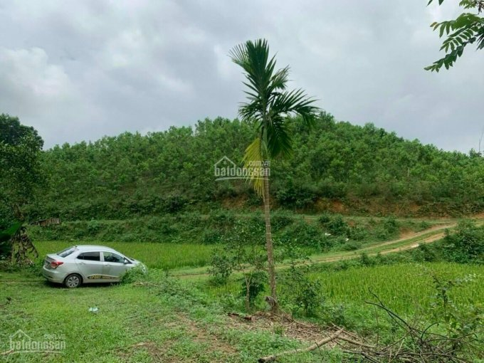 Bán đất Yên Thủy - 1,5ha đất ở và đất vườn, giá chỉ hơn 1 tỷ ảnh 0