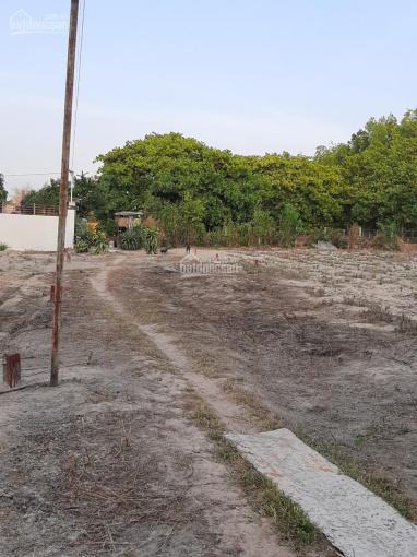 Cần bán đất Tam Phước, Long Điền diện tích 138.4m2. Đất 2 mặt tiền, LH: 0973793770 ảnh 0
