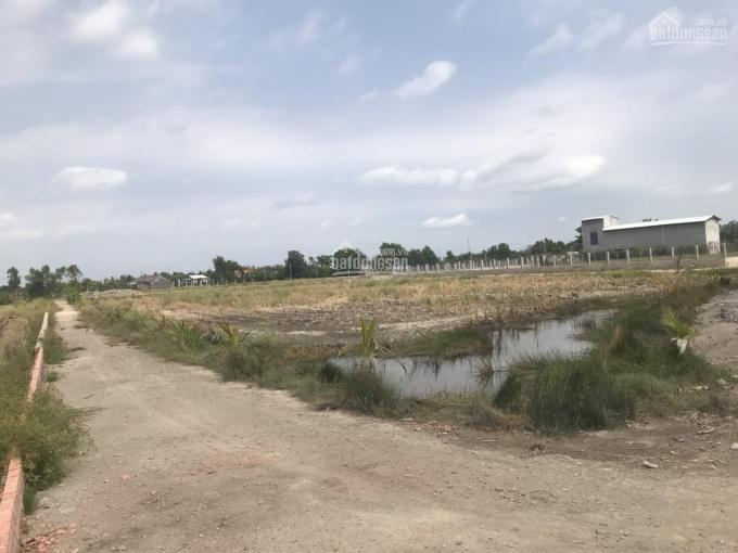 Định cư nước ngoài cần bán gấp đất mặt tiền đường Lý Thái Tổ, Huyện Nhơn Trạch, Đồng Nai ảnh 0