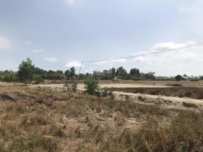 Bán 10.000m2 đất gần khu dân cư 586, Phường 2, TP Sóc Trăng, gần QL 1A, 4.5triệu/m2, LH 0976213355 ảnh 0