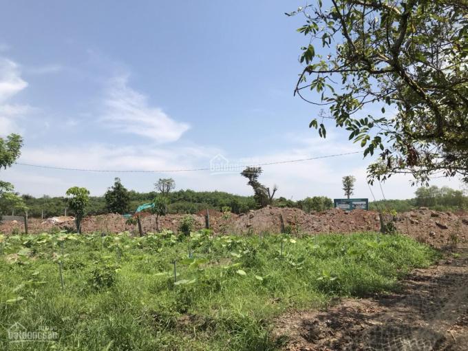 Bán 9000m2 đất nông nghiệp + ít thổ cư hẻm Triệu Quang Phục - Dương Kỳ Hiệp, LH 0932696699 ảnh 0