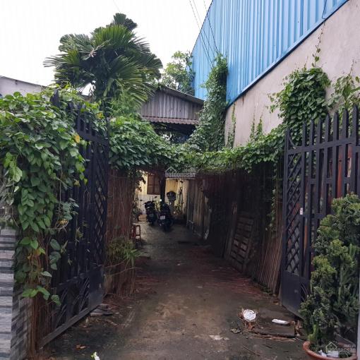Nhà vườn và dãy trọ 10 phòng gần Vườn Lài, quận 12, 400m2 giá chỉ 9 tỷ ảnh 0