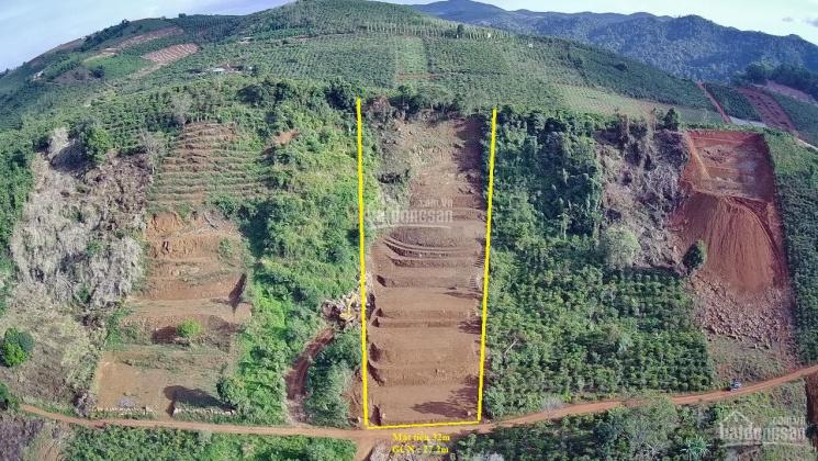 Lô đất view đẹp trực diện Hồ Ngọc, đồi chè, cao tốc Bảo Lộc hạ giá bán gấp. LH: 0848820162 coi đất ảnh 0