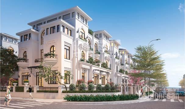 Bán biệt thự Louis City Hoàng Mai, lô góc hai mặt thoáng, vị trí tuyệt đẹp mặt phố Tân Mai ảnh 0