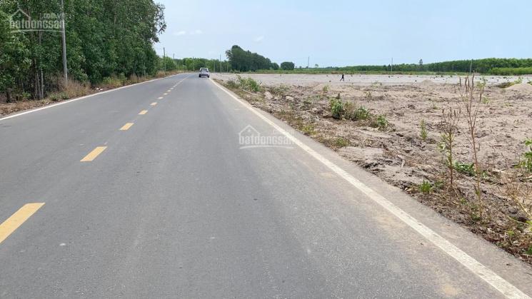 Bán 1686m2 MT 12m thổ vườn SHR Lộc An, Hồ Tràm, BR - VT cách QL 55 800m, 2.9tr/m2 LH 0906 946 759 ảnh 0