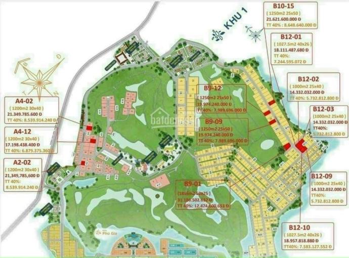 Đất nền sổ đỏ từ 1000m2 - 100% thổ cư - duy nhất tại Biên Hòa New City, giá chỉ từ 14tr/m2 ảnh 0
