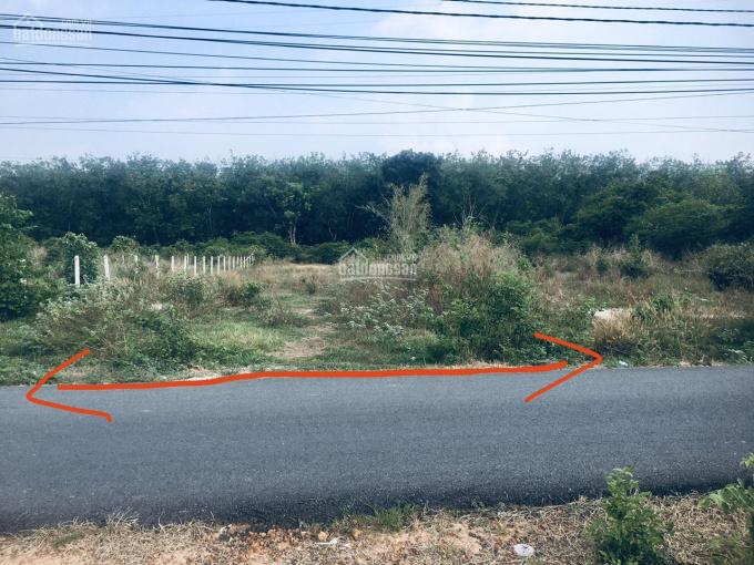 Cần bán đất 1.632m2(20x82,5) mặt tiền đường nhựa Bàu Lách, xã Phạm Văn Cội huyện Củ Chi, TP. HCM ảnh 0
