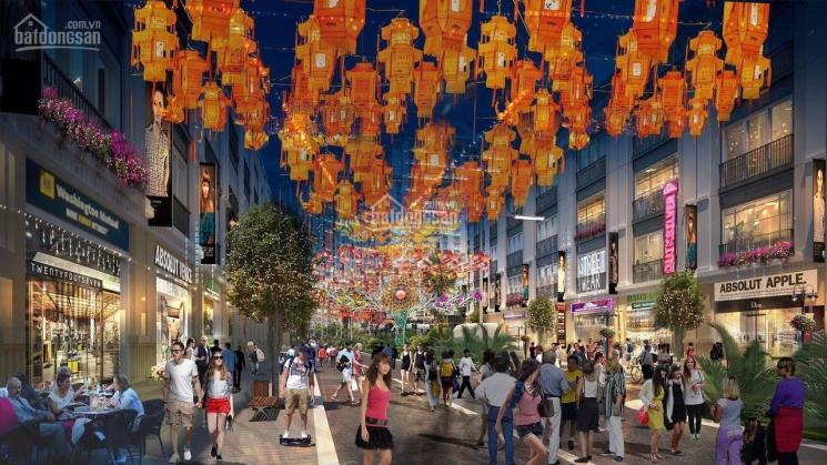Bán 2 căn góc siêu VIP phố đi bộ và phố chợ đêm dự án Apec Diamond Park Lạng Sơn, suất ngoại giao ảnh 0