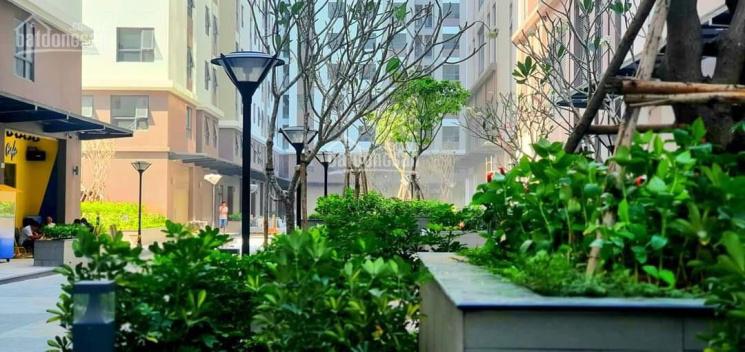 Căn hộ sân vườn tầng cao mặt tiền Phạm Thế Hiển, thiết kế 4PN 3WC, cực hiếm tại Sài Gòn ảnh 0
