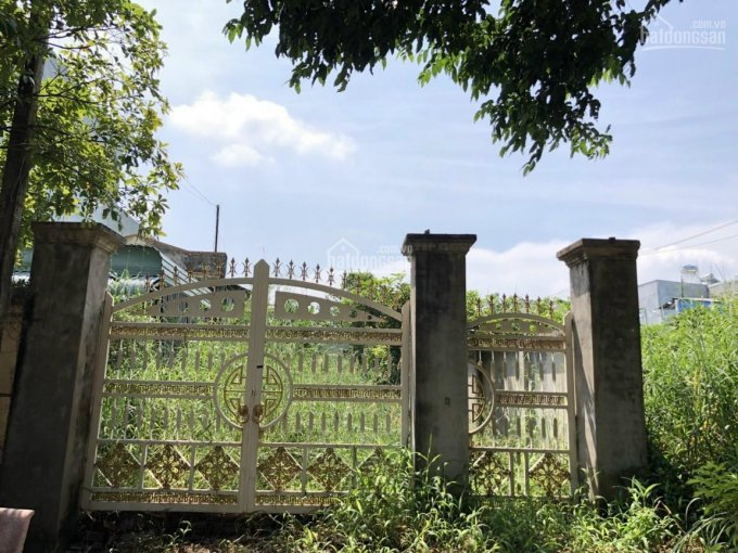 Đất mặt tiền Nguyễn Đức Thuận sát KDC Hiệp Phát, đối diện trường mầm non DT 6x36m thổ cư 50m2 ảnh 0