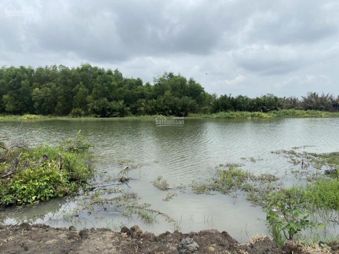 Nếu a/c thích làm nhà vườn ven sông tại Nhơn Trạch, Đồng Nai, thì đừng bỏ qua bài viết này ạ ảnh 0