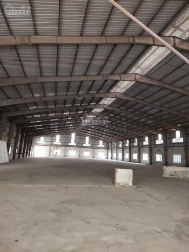 Cho thuê 10.000-20.0000-40000m2 kho xưởng tại Thường Tín ảnh 0