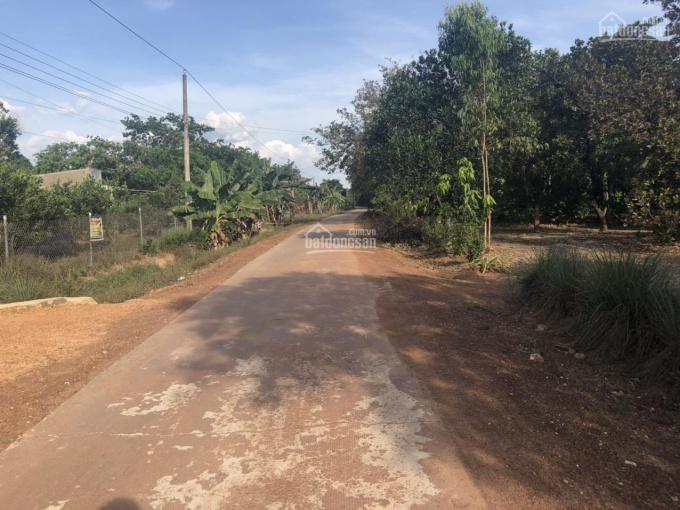 Bán đất sào sổ sẵn gần khu công nghiệp đường chính nhà nước ảnh 0
