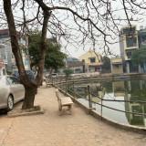 Có 55m2 ao sen sát công làng Đại Áng, Thanh Trì ảnh 0