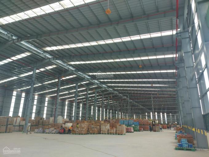 Cho thuê kho xưởng 5000m2, 10.000m2 đẹp chuẩn trong khu công nghiệp quận 2 ảnh 0