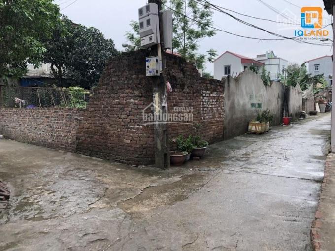 Cần bán 40m2 đất hai mặt đường gần KCN Nội Bài tại Xuân Bách, Quang Tiến, Sóc Sơn. LH 0389987755 ảnh 0