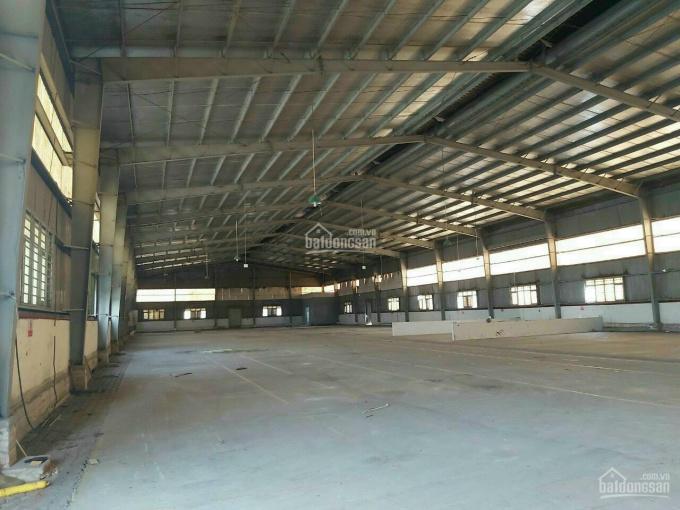 Bán xưởng (đã xây) 8946m2 đất SXKD đường xe container tại cầu Mồng Gà, Long An ảnh 0