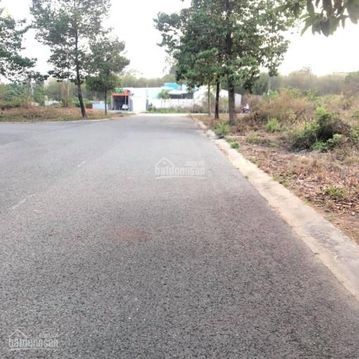 Bán đất khu TĐC Định Hòa, phường Hòa Phú, Thủ Dầu Một, đất ở đô thị 100% ảnh 0