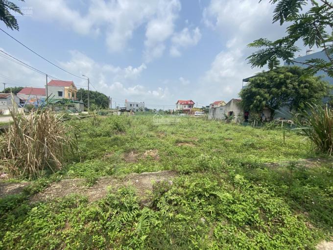 Cần bán gấp đất nhà vườn Gia Sinh khu tái định cư xóm 10 đẹp lung linh 340m2 giáp áp ve gần hồ ảnh 0