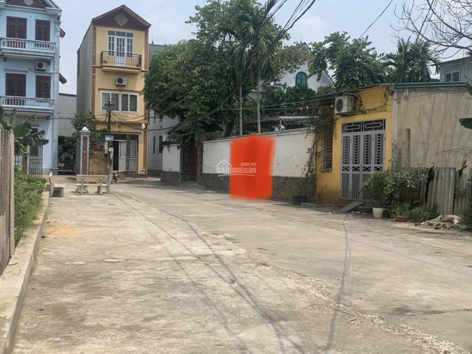 Chính chủ bán đất Nam Hồng, Đông Anh, Hà Nội ảnh 0