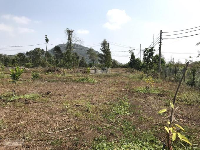 Bán 1 hecta đất vườn, mặt tiền 70m, giá 750 triệu/sào , ấp Hàng Gòn, Long Khánh, Đồng Nai. ảnh 0