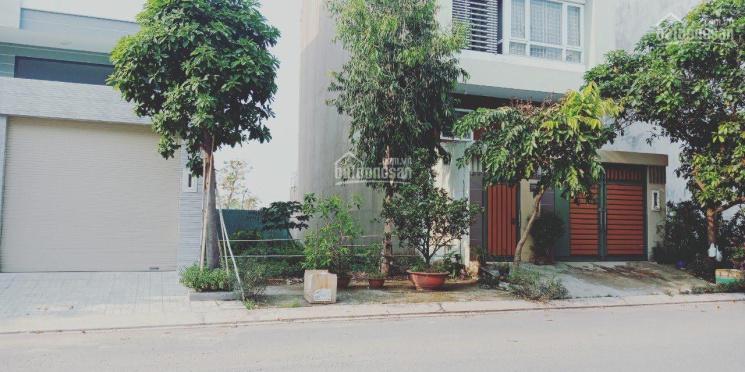 Bán đợt cuối 20 nền KDC Bình Lợi, Quận Bình Thạnh, sổ hồng riêng. LH 0938662295 ảnh 0
