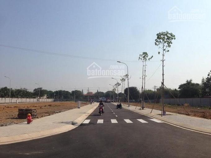 Chính chủ cần ra gấp lô đất ngay KCN Giang Điền, SHR chính chủ, giá 500tr, 0778827219 Ngân. ảnh 0