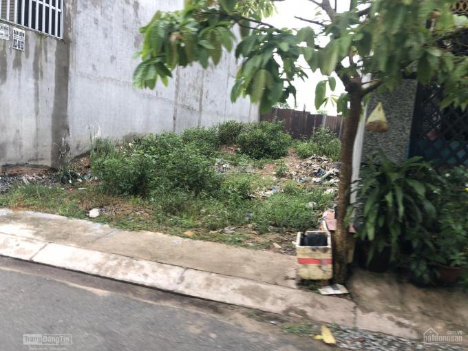 Đất chính chủ sổ hồng riêng full thổ cư MT Thuận Giao 25, Thuận An, 76m2. LH: 0973939677 ảnh 0