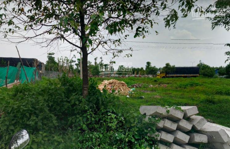 Đất trong KCN Đại Đăng có sổ sẵn, 1.3tỷ/150m2 đường D6, Tân Uyên, gần chợ Tân Vĩnh Hiệp, 0773530849 ảnh 0