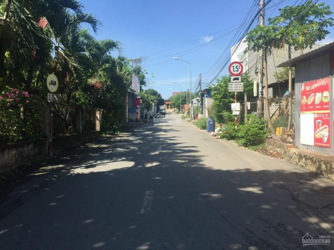 Bán đất tặng nhà cấp 4, MT đường Cây Da, Tân Bình, Dĩ An giá 24tr/m2 SHR. LH chính chủ ảnh 0