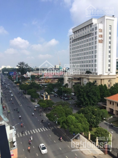 Bán biệt thự Nguyễn Văn Trỗi - hẻm 38 đẹp, DT: 8x22m, giá 45 tỷ ảnh 0