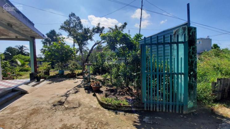 Cần bán đất vườn có nhà + ao cá đường An Thạnh 8, phường An Thạnh, thành phố Thuận An, Bình Dương ảnh 0