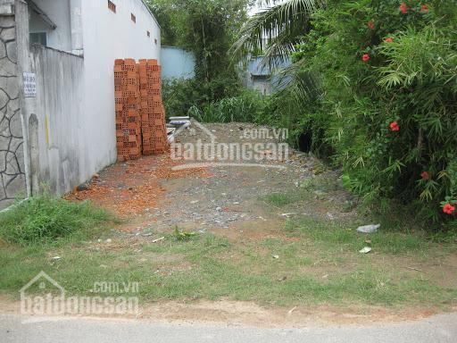 Bán đất gần mặt tiền Trần Đại Nghĩa, xã Tân Kiên, Bình Chánh, 84.5m2, giá bán nhanh 1,267 tỷ ảnh 0