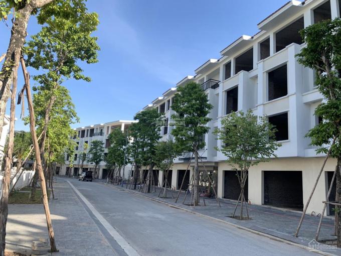 Bán căn hộ kinh doanh 90m2 giá 51.5tr/m2 đối diện trung tâm thương mại giá rẻ nhất TT LH 0965642659 ảnh 0